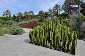 de botanische tuin in barcelona