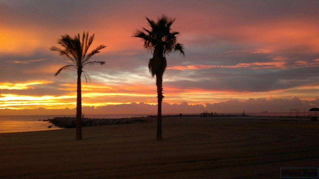 strandfot met palmbomen en ondergaande zon