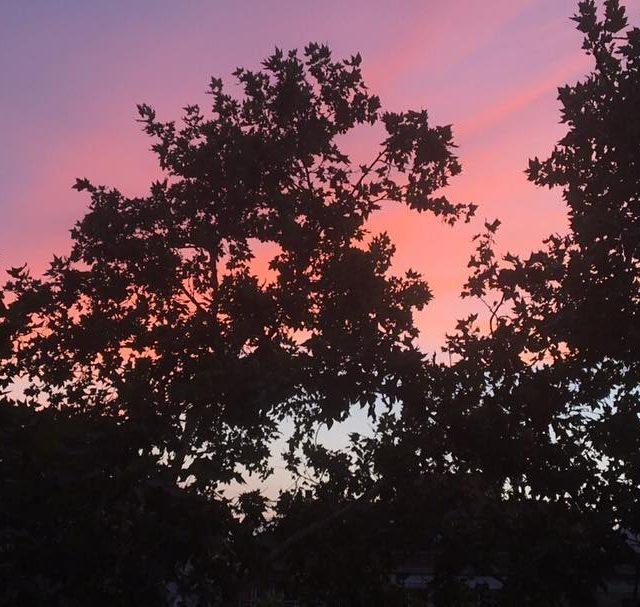 Ya viste el cielo ayer? cielo increible colors rosa skyhellip