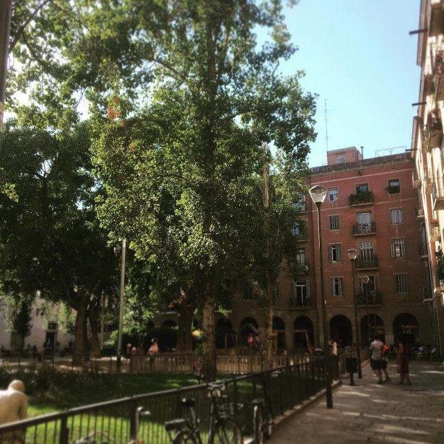 Hoy te presentamos una foto de un plaza cerca dehellip