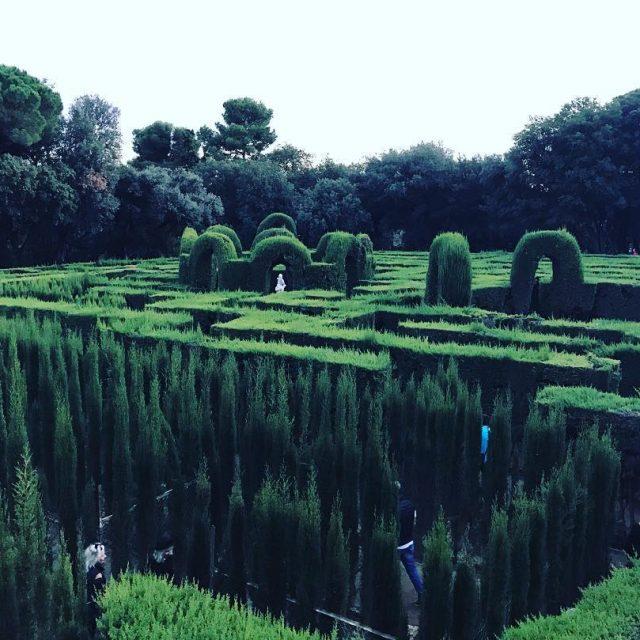 Descubre el fabuloso Laberinto de Horta  laberinto laberintodehorta spainhellip