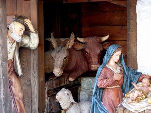 de os en de ezel in de kerststal
