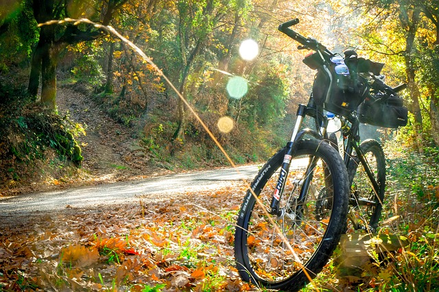 mountainbike in het bos