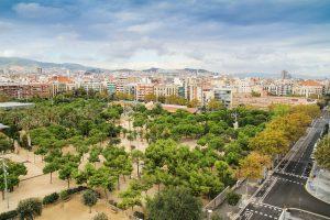 park met bomen in barcelona