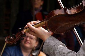 viool van dichtbij