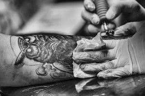 tatoeage van uil op arm
