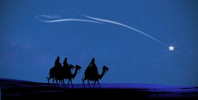 drie wijzen op kamelen