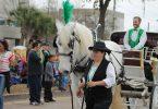 wit paard met wagen in optocht