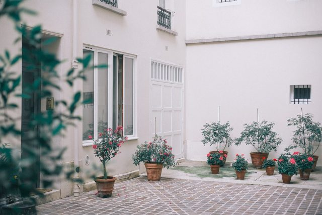 terrace with pots and plants
